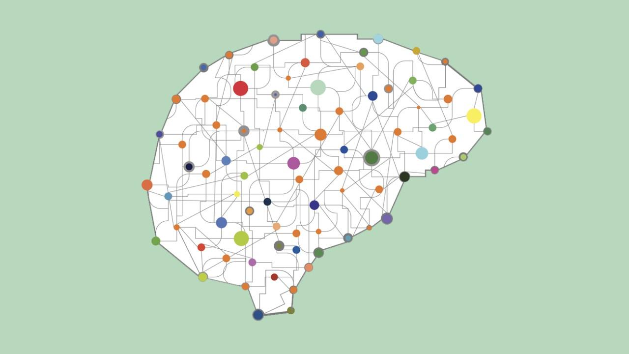 7 déficits de las funciones ejecutivas ligados al TDAH